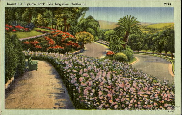 Beautiful Elysian Park Los Angeles California