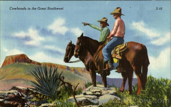 Cowhands In The Great Southwest Cowboy Western