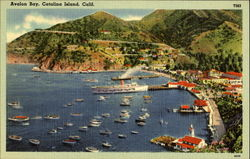Avalon Bay Postcard