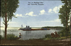 Tow On Mississippi River Postcard