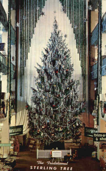 Tallest Christmas Tree