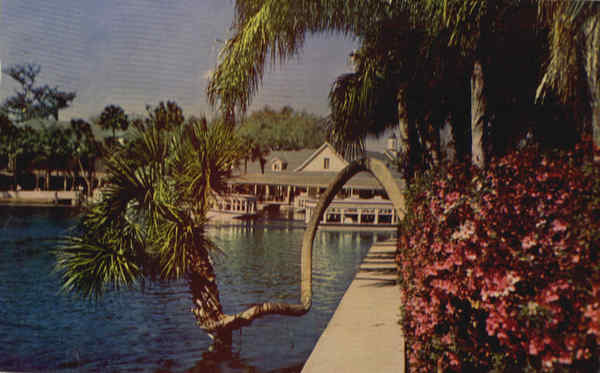World Famous Silver Springs Florida
