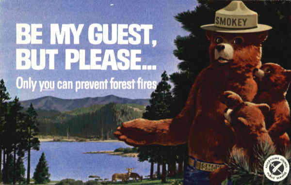 Smokey the Bear Only you can prevent forest fires Advertising