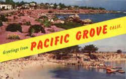 Greetings from Pacific Grove