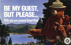 Smokey the Bear Only you can prevent forest fires