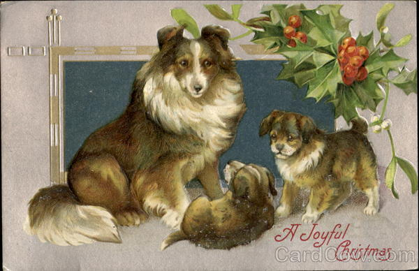 Collie Dog & Puppies Christmas Dogs