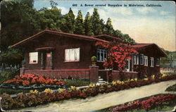 A Flower Covered Bungalow In Midwinter