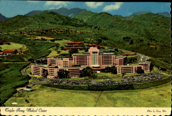 tripler army medical ctr chat Want more information mailed to you about becoming a soldier in the us army fill out the form below (some fields are optional) and you.