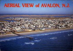 Aerial View Of Avalon