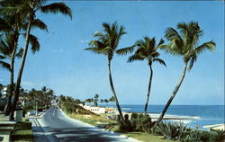 View Of Beach As Seen From Ocean Blvd Postcard