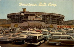 Downtown Bull Ring