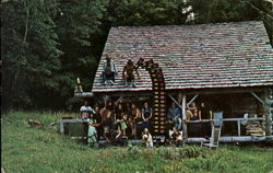 People Standing outside Cabin and Sitting on Roof