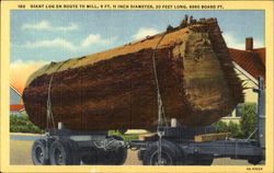 Giant Log En Route To Mill
