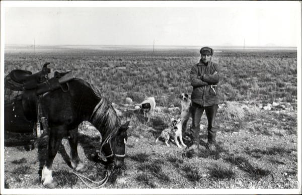Man with Dogs, Horse Unidentified People