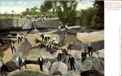 Scene From Bailey's Fall, Starved Rock Postcard
