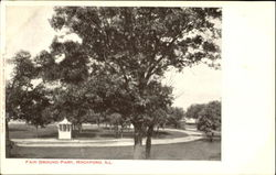 Fair Ground Park Postcard