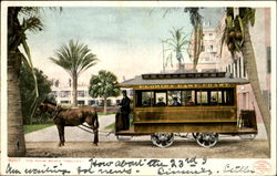 The Palm Beach Trolley