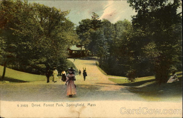 Drive, Forest Park Springfield Massachusetts