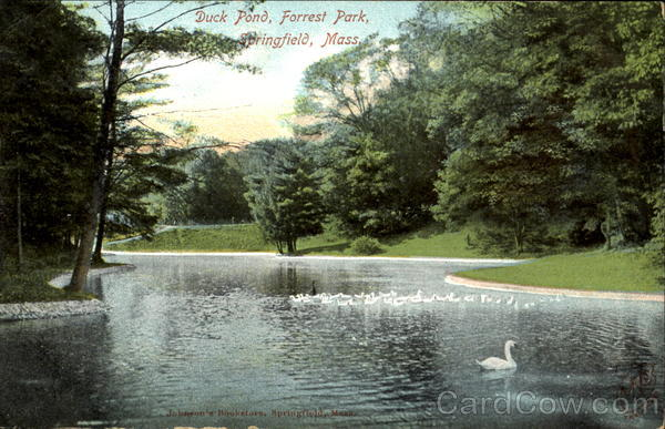Duck Pond, Forest Park Springfield Massachusetts