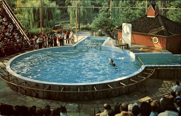 Hershey Park Dolphins Pennsylvania