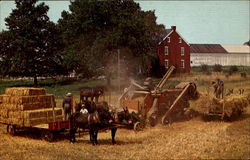 Amish Threshing Scene