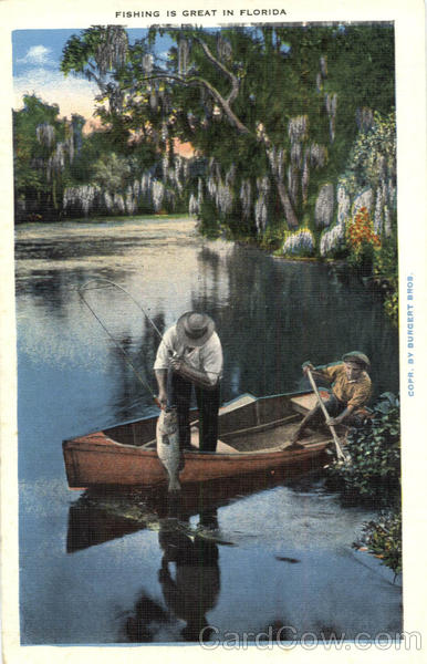 Fishing: Fishing is Great in Florida