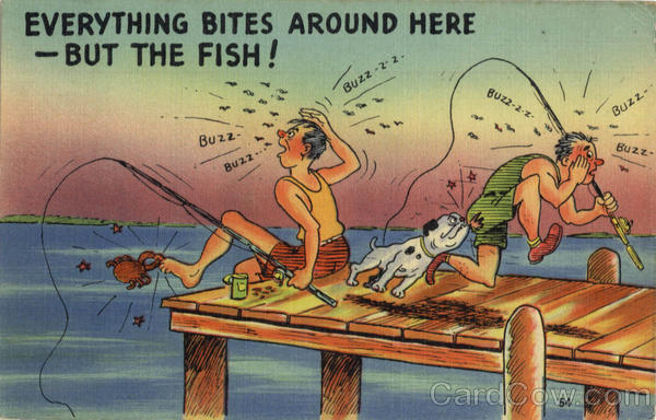Fishing: Everything Bites Around here - But the Fish!