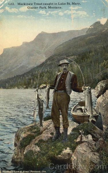 Fishing: Mackinaw Trout caught in Lake St. Mary Glacier ...