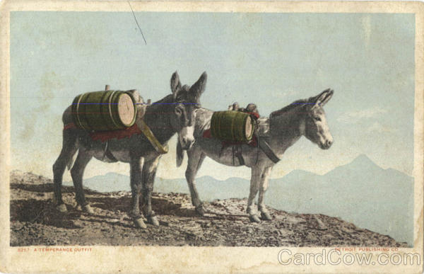 A Temperance Outfit - Mules, Donkeys