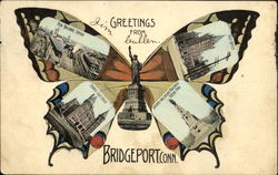 Greetings From Bridgeport Butterfly