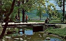 Bridge Between Picnic Area And Children's Playground, Red House Lake Postcard