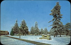 Winter Scene, Andrews University