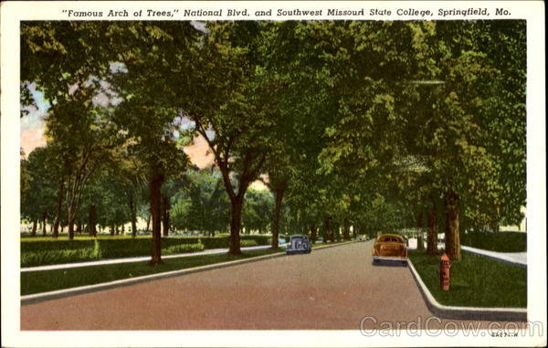 Famous Arch Of Trees, National Blvd. and Southwest Missouri State College Springfield