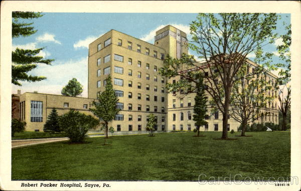 Robert Packer Hospital Sayre Pennsylvania