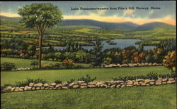 Lake Pennesseewassee From Pike's Hill