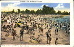 Seaside Park Postcard