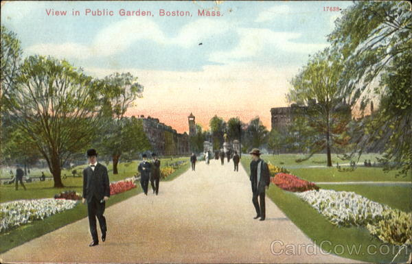 View In Public Garden Boston Massachusetts