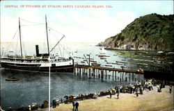 Arrival Of Steamer At Avalon