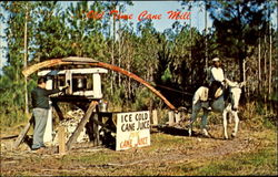 Old Time Cane Mill