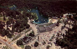 Aerial Photograph Of Florida's Beautiful Silver Springs