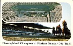 Thoroughbred Champions At Florida's Number One Track