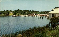 Marina At Eau Gallie Postcard