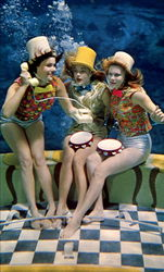 The Mermaids Of Weeki Wachee