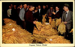 Virginia Tobacco Market
