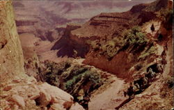 By Mule Train Into The Grand Canyon, Grand Canyon National Park Postcard