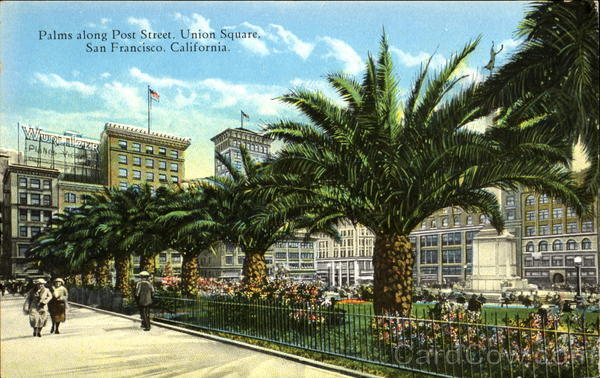 Palms Along Post Street, Union Square San Francisco California