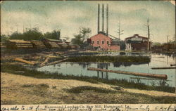 Hammond Lumber Co. Saw Mill