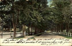 Roseland Street