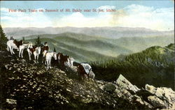 First Pack Train On Summit Of Mt. Baldy, St. Joe