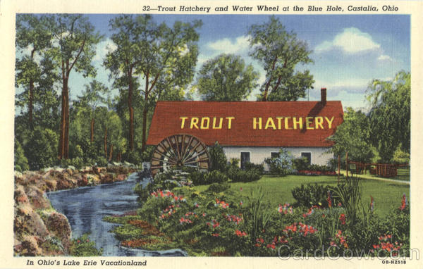 Trout hatchery and water wheel at the blue hole castalia oh for Fish hatchery ohio